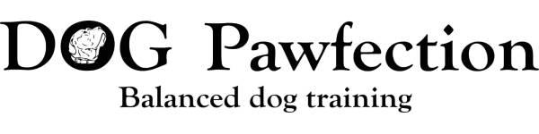 dog-pawfection